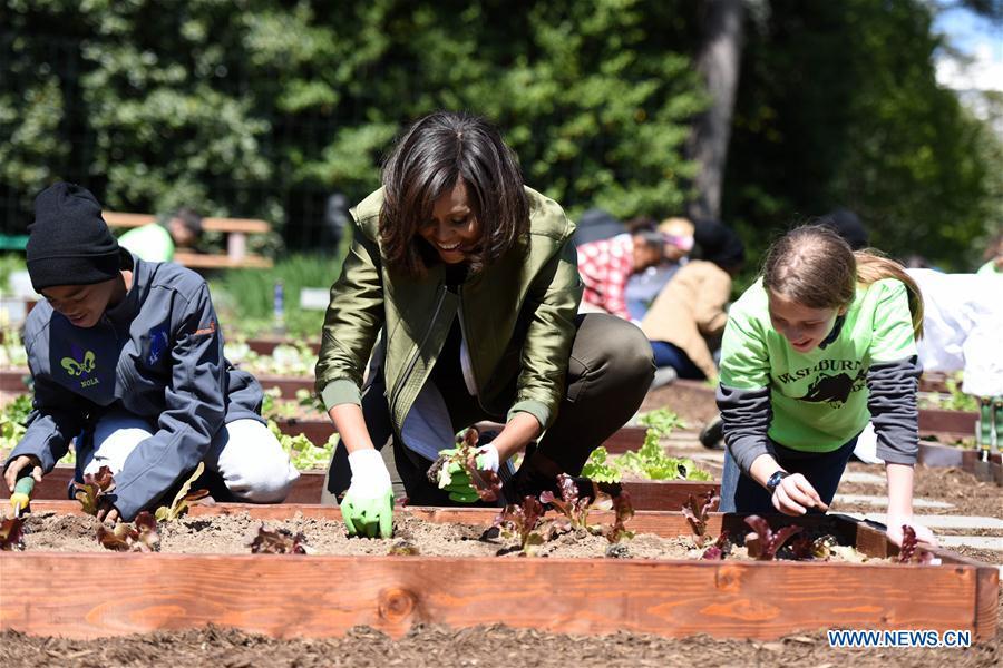 (国际)(1)白宫菜园开种